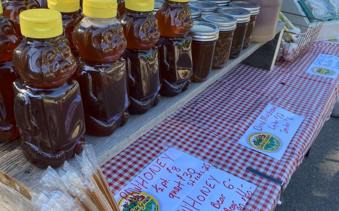 Thursday Morning Market with Ward County Master Gardeners and Magic Bean Brewing Co